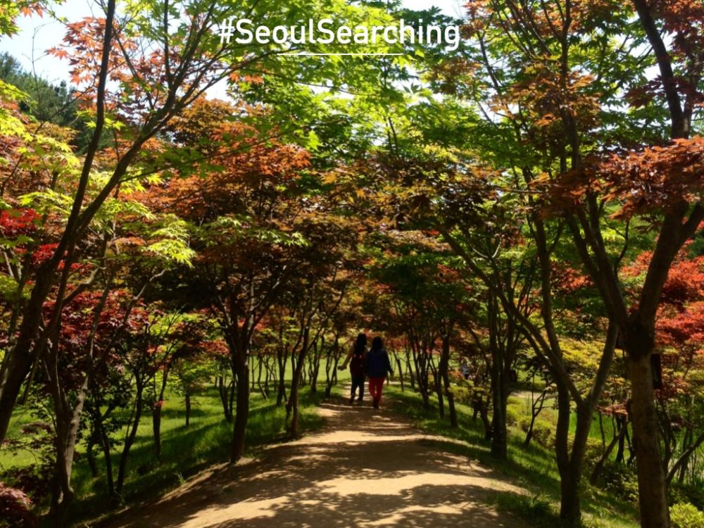 Seoul.004.jpg